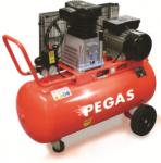 Масляный компрессор PEGAS DH-30100